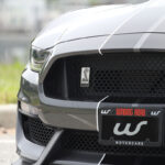 Ford Mustang Shelby GT350 full